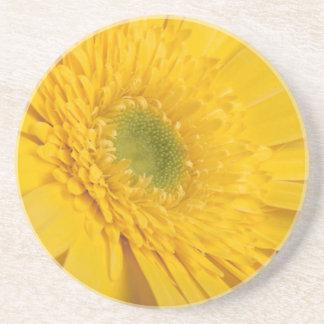 Floraciones amarillas del zinnia en un práctico de posavasos personalizados