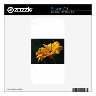 FLORACIONES AMARILLAS SKINS PARA eliPhone 4S