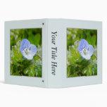 Floraciones azules del arrastramiento Speedwell