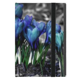 Floraciones azules del azafrán de la aguamarina iPad mini cárcasa