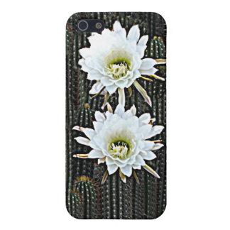 Floraciones blancas del cactus iPhone 5 fundas