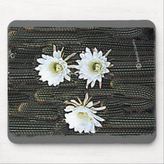 Floraciones blancas del cactus mousepad