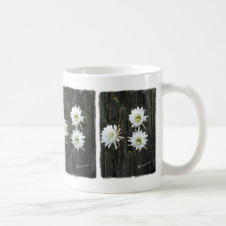 Floraciones blancas del cactus taza
