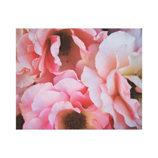 Floraciones color de rosa rosadas apacibles - foto impresiones en lona estiradas