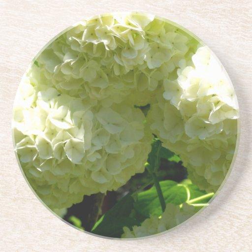 Floraciones de Bush de la bola de nieve Posavasos Diseño