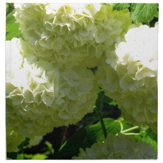 Floraciones de Bush de la bola de nieve Servilleta De Papel