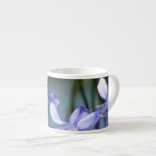 Floraciones de la flor del Agapanthus Tazas Espresso