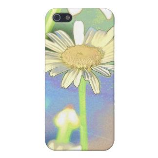 Floraciones de la margarita iPhone 5 carcasas