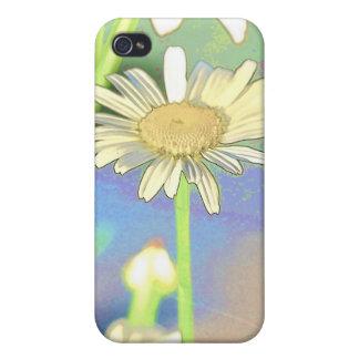 Floraciones de la margarita iPhone 4 cárcasas