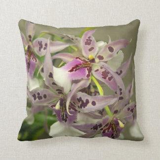 Floraciones de la orquídea cojin