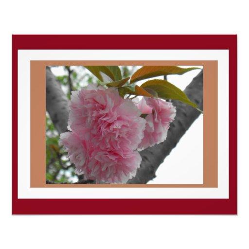 Floraciones de la primavera en arte rosado impresiones fotográficas