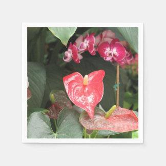 Floraciones de las orquídeas servilletas desechables