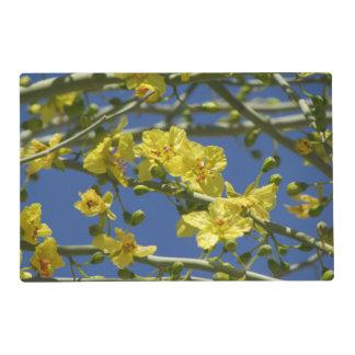 Floraciones de Palo Verde Tapete Individual