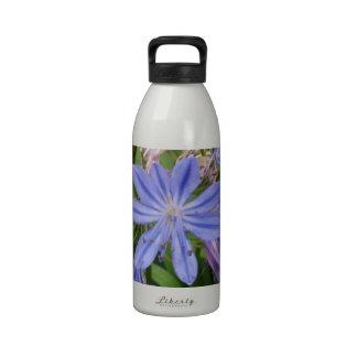 Floraciones del Agapanthus Botella De Agua