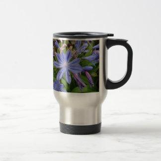 Floraciones del Agapanthus Taza De Café