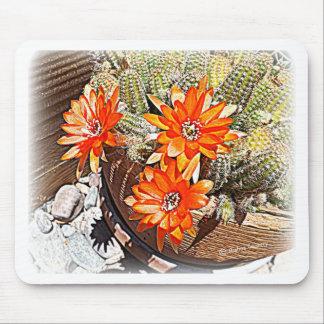 Floraciones del cactus de la cuerda tapetes de raton