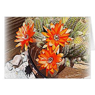 Floraciones del cactus de la cuerda tarjeta de felicitación