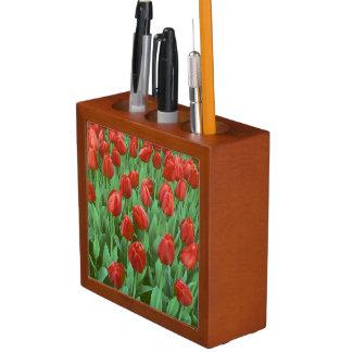 Floraciones del campo del tulipán en la primavera portalápices