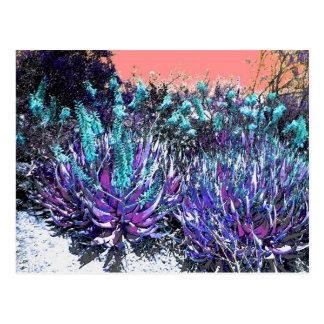Floraciones del desierto postal