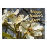 Floraciones del día de madre tarjeta de felicitación