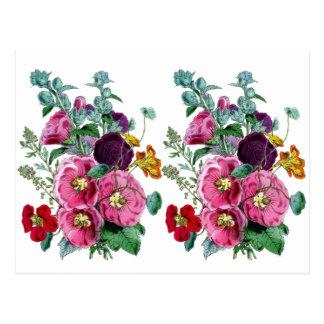 Floraciones del Hollyhock del vintage Tarjetas Postales