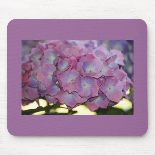 Floraciones del Hydrangea Alfombrilla De Raton