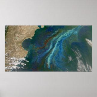 Floraciones en el océano por la Patagonia Impresiones