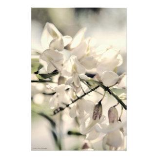 Floraciones en un día brillante cojinete