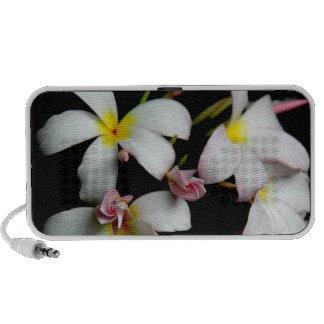 Floraciones hawaianas florales, tropicales del Plu Altavoces