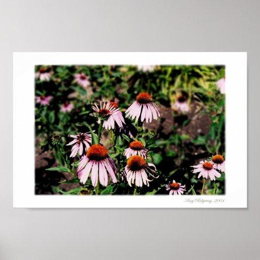 Floraciones hermosas 2 póster