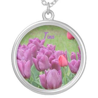 Floraciones hermosas de las flores púrpuras de los collar plateado