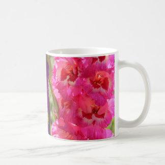 Floraciones hermosas del gladiolo taza
