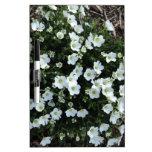 Floraciones Pizarra Blanca