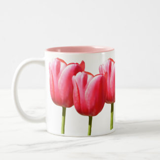 Floraciones preciosas rosadas del tulipán taza