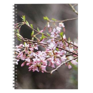 Floraciones púrpuras cuadernos