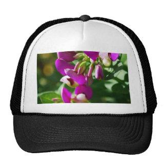 Floraciones púrpuras gorra