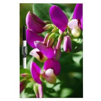 Floraciones púrpuras pizarra blanca