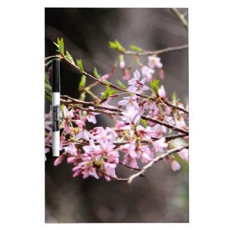 Floraciones púrpuras tablero blanco