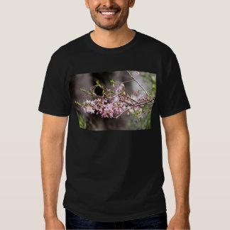 Floraciones púrpuras playeras
