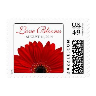 Floraciones rojas del amor de la margarita del estampilla