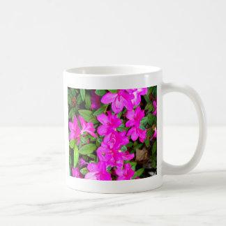 Floraciones rosadas de la azalea tazas de café