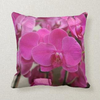 Floraciones rosadas de la orquídea almohada