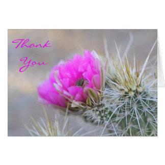 floraciones rosadas del cactus, gracias tarjeta pequeña
