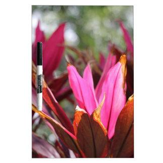 floraciones rosadas pizarra