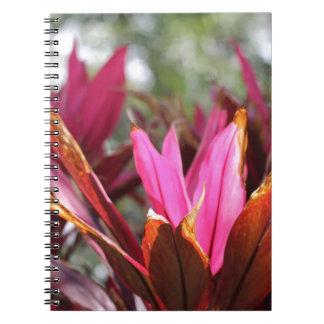floraciones rosadas spiral notebooks