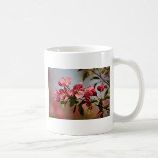 Floraciones rosadas taza de café