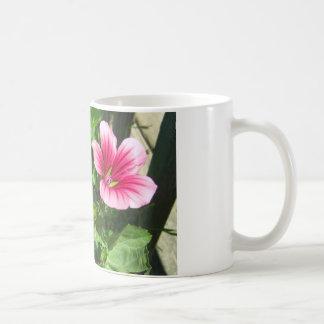 Floraciones rosadas taza