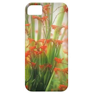 Floraciones suaves del verano iPhone 5 carcasa