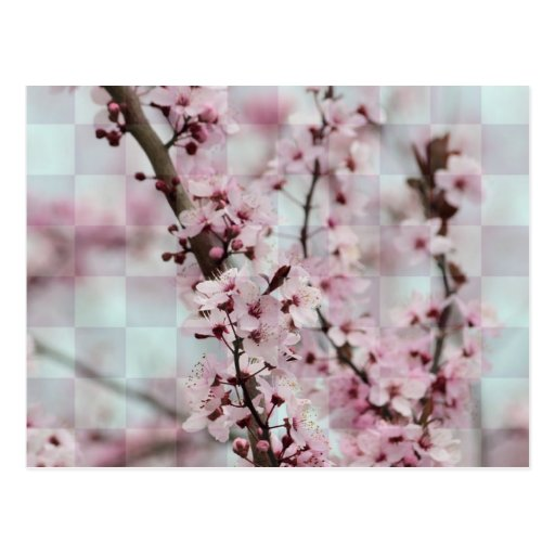 Floral a cuadros tarjetas postales