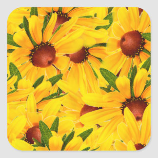 Floral Abstract BG of a Black-Eyed Susan Photo Square Sticker